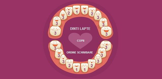 The order of change of baby teeth